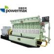 300系列-兰炭气发电机组