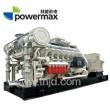 190系列-生物质气发电机组