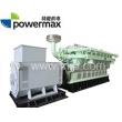 300系列-沼气发电机组